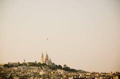 Pássaro e Montemartre Imagem de Stock