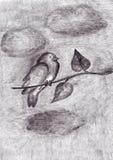 Pássaro em um ramo de árvore Imagens de Stock
