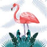 Pássaro exótico e tropical foto de stock royalty free