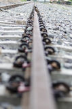 Pássaro na estrada de ferro Foto de Stock