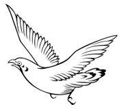 Pássaro no fundo branco para colorir Imagens de Stock Royalty Free