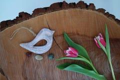 Pássaro no fundo de madeira 7 Imagens de Stock