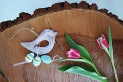 Pássaro no fundo de madeira 8 Imagens de Stock