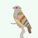 Pássaro no ramo ilustração royalty free