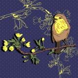 Pássaro no ramo Ilustração do vetor Fotografia de Stock Royalty Free