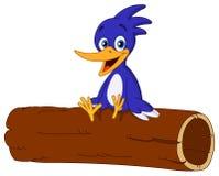 Pássaro no registro Foto de Stock