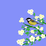 Pássaro pequeno Imagem de Stock Royalty Free