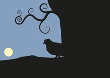 Pássaro imagem de stock royalty free