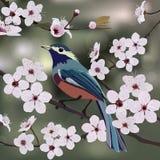 Projeto, pássaro e flor de cartão ilustração stock