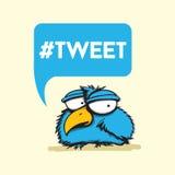 Pássaro social dos meios Imagens de Stock