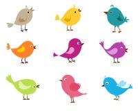 Pássaros bonitos ajustados Fotografia de Stock