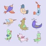 Pássaros bonitos ajustados Fotos de Stock