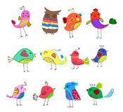 Pássaros bonitos ajustados Fotografia de Stock Royalty Free