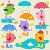Pássaros bonitos coloridos Imagem de Stock