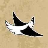 Pássaros bonitos dos desenhos animados Vetor Fotos de Stock