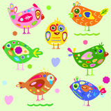 Pássaros brilhantes Fotos de Stock