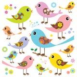 Pássaros coloridos com teste padrão floral Fotos de Stock Royalty Free