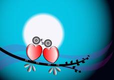 Pássaros coloridos do amor Fotos de Stock Royalty Free