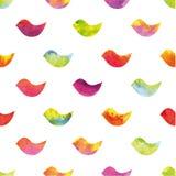 Pássaros coloridos em um fundo branco Ilustração do vetor Fotografia de Stock