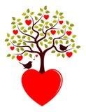 Pássaros da árvore e do amor do coração Imagens de Stock Royalty Free