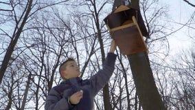 Pássaros da alimentação do rapaz pequeno e partes de pão postas em alimentadores do pássaro filme