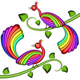 Pássaros da cor do arco-íris da alegria Foto de Stock