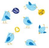 Pássaros da mensagem do Twitter ajustados Fotos de Stock