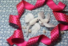 Pássaros da pomba do branco do símbolo do dia do ` s do Valentim Fotos de Stock