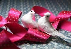 Pássaros da pomba do branco do símbolo do dia s do Valentim de `` Foto de Stock Royalty Free