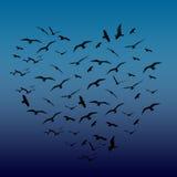 Pássaros dados forma coração ilustração royalty free