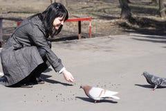 Pássaros de alimentação da menina fotografia de stock