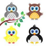 Pássaros de bebê coloridos Foto de Stock