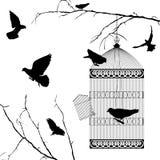 Pássaros de Fyling e silhuetas da gaiola Foto de Stock