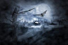Pássaros de noite Imagem de Stock Royalty Free