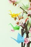 Pássaros de papel coloridos do origâmi em ramos de florescência da cereja Imagens de Stock