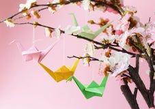 Pássaros de papel coloridos do origâmi em ramos de florescência da cereja Fotografia de Stock Royalty Free