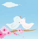 Pássaros do amante ilustração royalty free