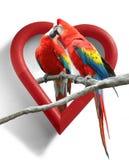 Pássaros do amor Imagens de Stock