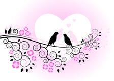 Pássaros do amor na filial de florescência ilustração do vetor