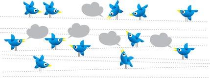 Pássaros do Twitter Fotos de Stock