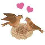 Pássaros dos pares no ninho Fotografia de Stock Royalty Free