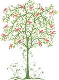 Pássaros e árvore Imagens de Stock