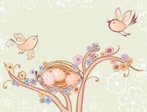 Pássaros e ninho Imagem de Stock Royalty Free