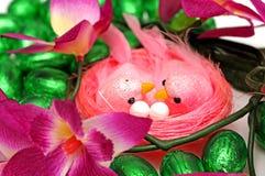 Pássaros de Easter no ninho imagens de stock