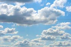 Pássaros e nuvens Fotografia de Stock