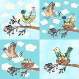 Pássaros e pintainhos Foto de Stock Royalty Free