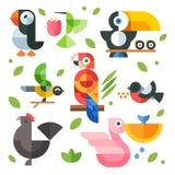 Pássaros e pintainhos mágicos das ilustrações Fotografia de Stock Royalty Free