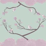 Pássaros e teste padrão sem emenda dos ramos de árvore Foto de Stock Royalty Free
