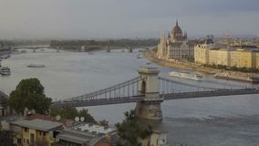 Pássaros em Budapest vídeos de arquivo