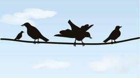Pássaros em fios Ilustração Royalty Free